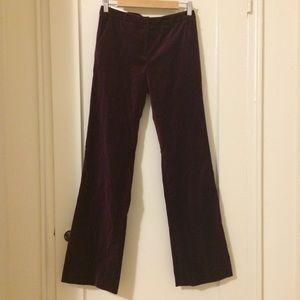 c99e4f144b779b Calvin Klein Pants - Calvin Klein NWT maroon red velvet bootcut pants